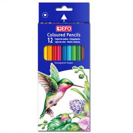 Ξυλομπογιές +Efo 12 χρώματα