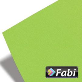 Κολάζ Χαρτόνι Fabi 50x70εκ 220γρ Νο115 Λαχανί